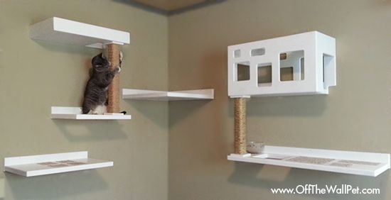 New Posh Cat Climbing Furniture From Off The Wall Pet