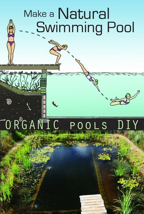 Natural Swimming Pools are kept clean by plants, not chemicals and are healthy environments for both people and wildlife. This film is a guide to making your own. David…