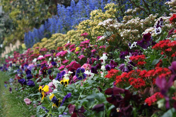 winter gardens 2013 Jkperrin