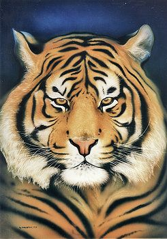 Tiger At Midnight by Johannes Margreiter