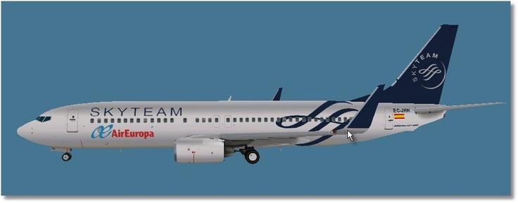 Air Europa Skyteam, Boeing 737-800 winglets
