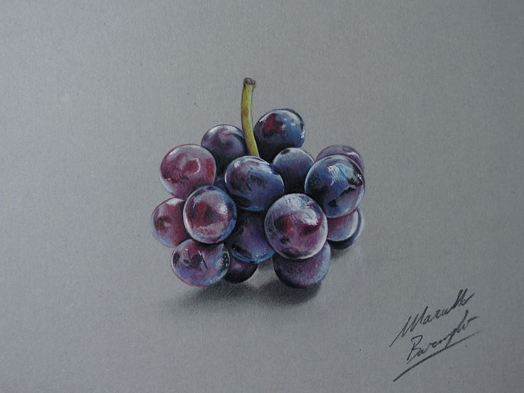 Drawing Grapes by marcellobarenghi.deviantart.com on @deviantART