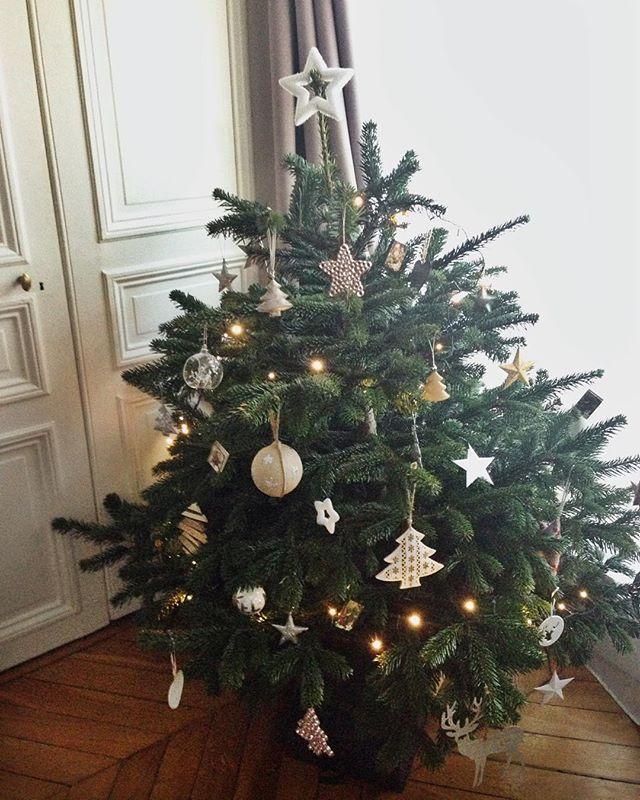 L'invité du mois  #christmastree #hellodecember
