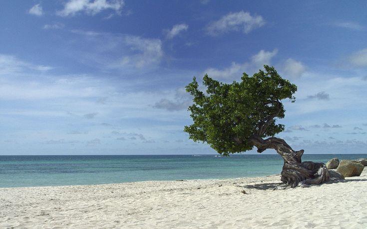 Resultado de imagen de Eagle Beach
