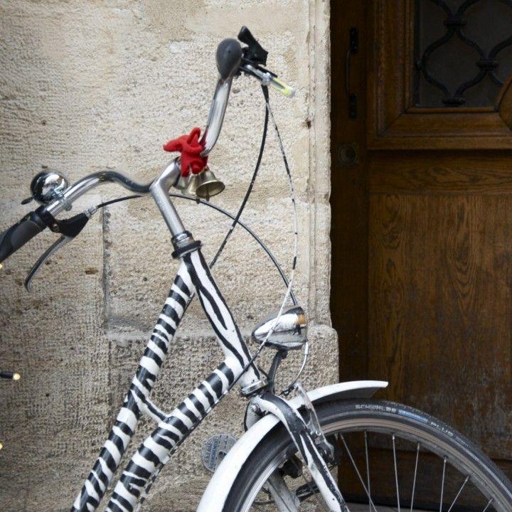 Paris Bike Zebra To Go With A Leopard Helmet