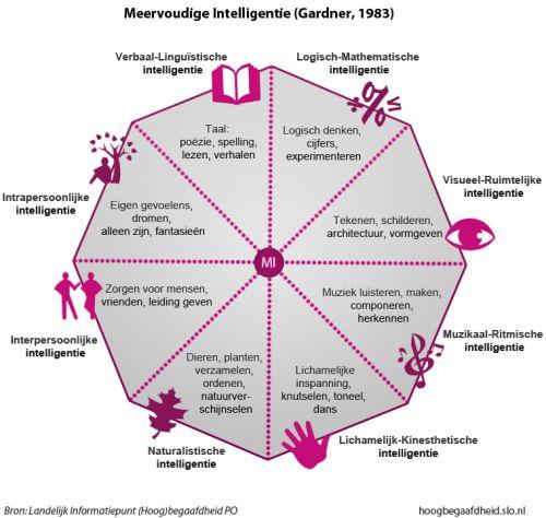 Meervoudige Intelligentie van Gardner Oud, misschien niet wetenschappelijk maar wel handig en verhelderend.