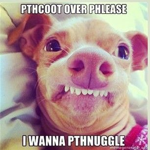 #phteven Instagram photos   Websta