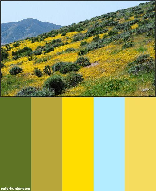 Yellow+Hills...+Color+Scheme