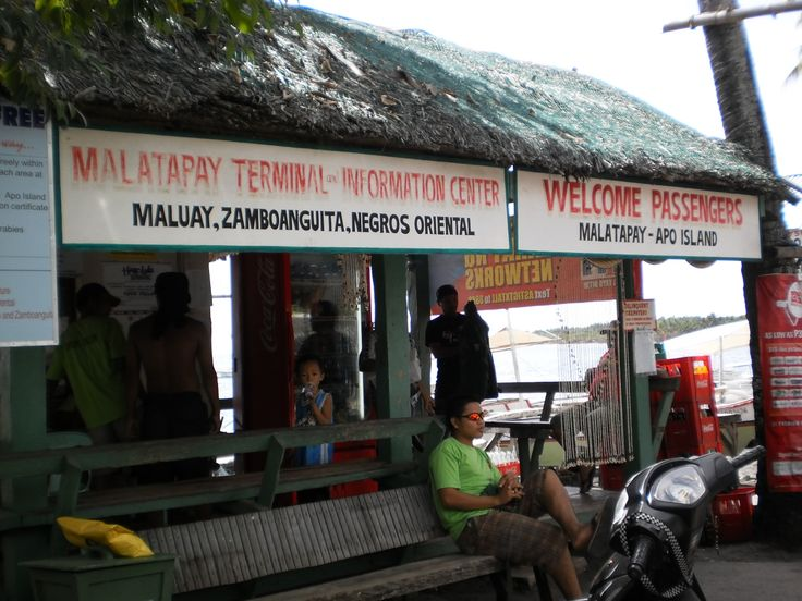Trip to Apo Island from Zamboanguita, Negros Oriental