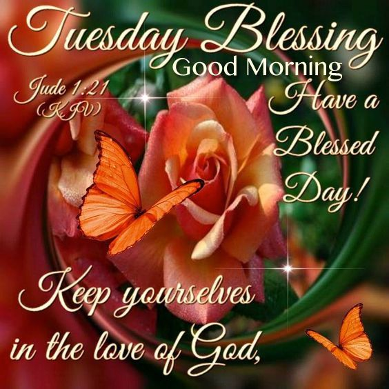 Tuesday Blessing, Good Morning good morning tuesday tuesday quotes good morning quotes happy tuesday good morning tuesday quotes happy tuesday morning tuesday morning facebook quotes tuesday image quotes happy tuesday good morning