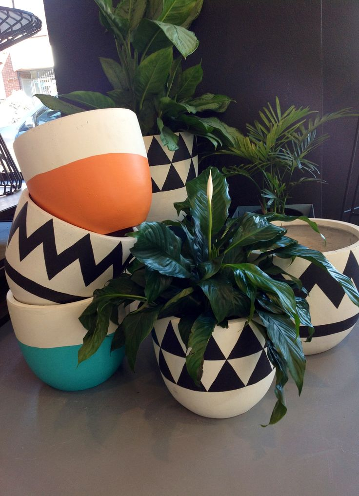 Just arrived in store I Fresh magic from Pop and Scott I fibreglass hand painted planters @ made by tait