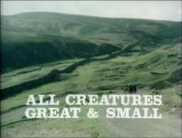 all creatures great and small - Google Search