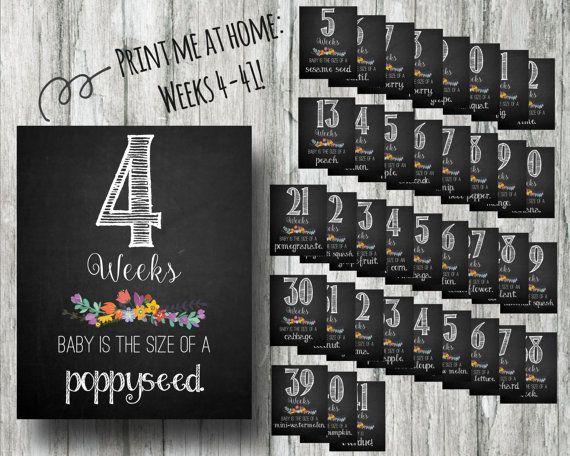 Printable Weekly Pregnancy Signs- Weeks 4-41 Chalkboard Countdown Prints- Instant Download