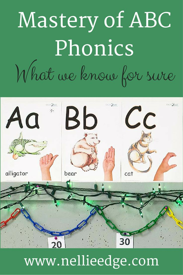Worksheet Online Phonics Programs Free 1000 images about phonics on pinterest initial sounds cut and free downloads delightful strategies abc family charts miniature flash cards