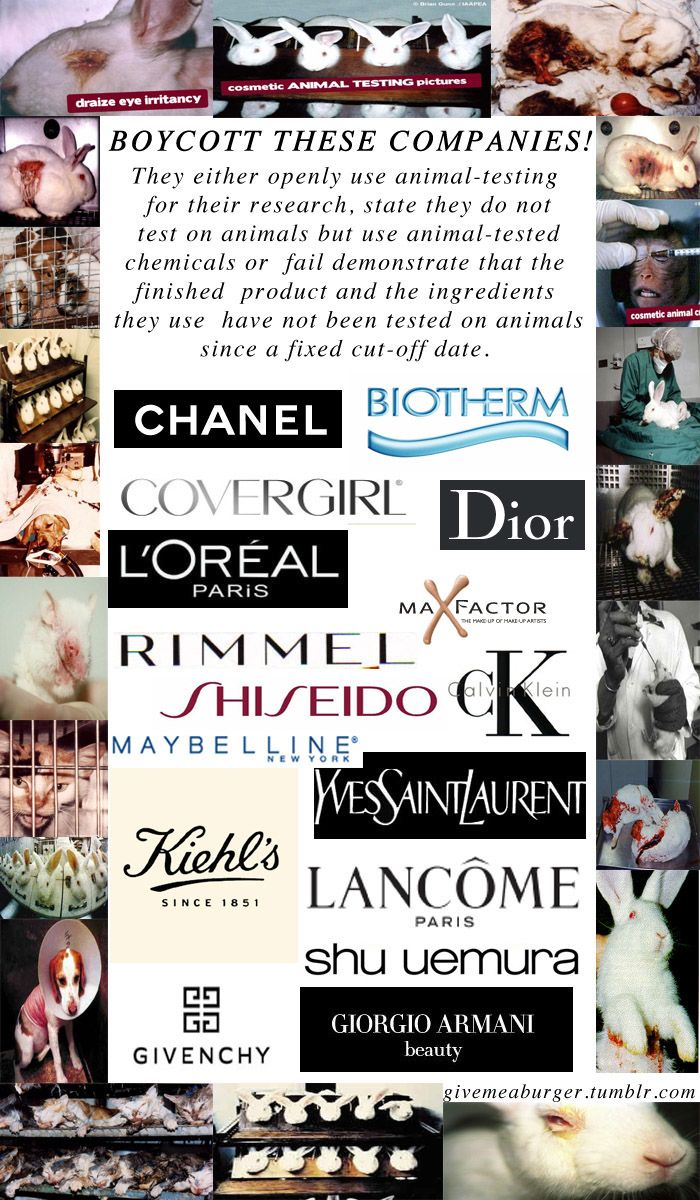 Boycott companies that are not cruelty free! CHECK PETA's website to see which companies are CURRENTLY cruelty free.   http://www.peta.org/?s=cruelty+free+makeup