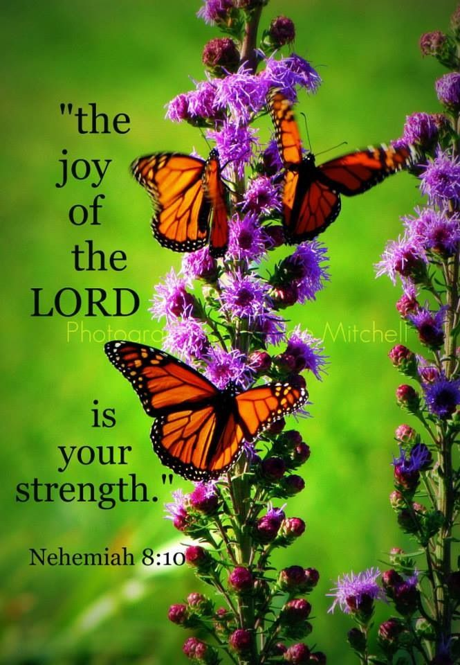 Joy of the Lord is your strength Neh. 8:10 http://nothingbutthetruth.org/ #Bible #Scripture #quotes