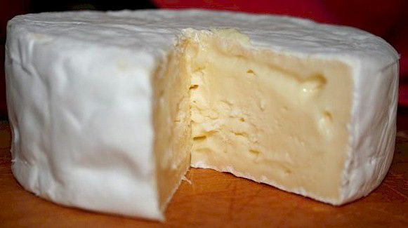 How to make Camembert cheese at home.