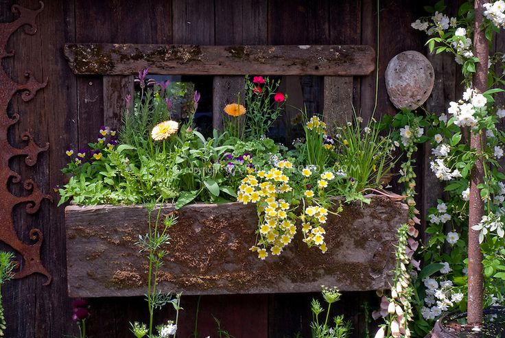 17 best images about gardens on pinterest gardens cottages and sheds - Rustic flower gardens ...