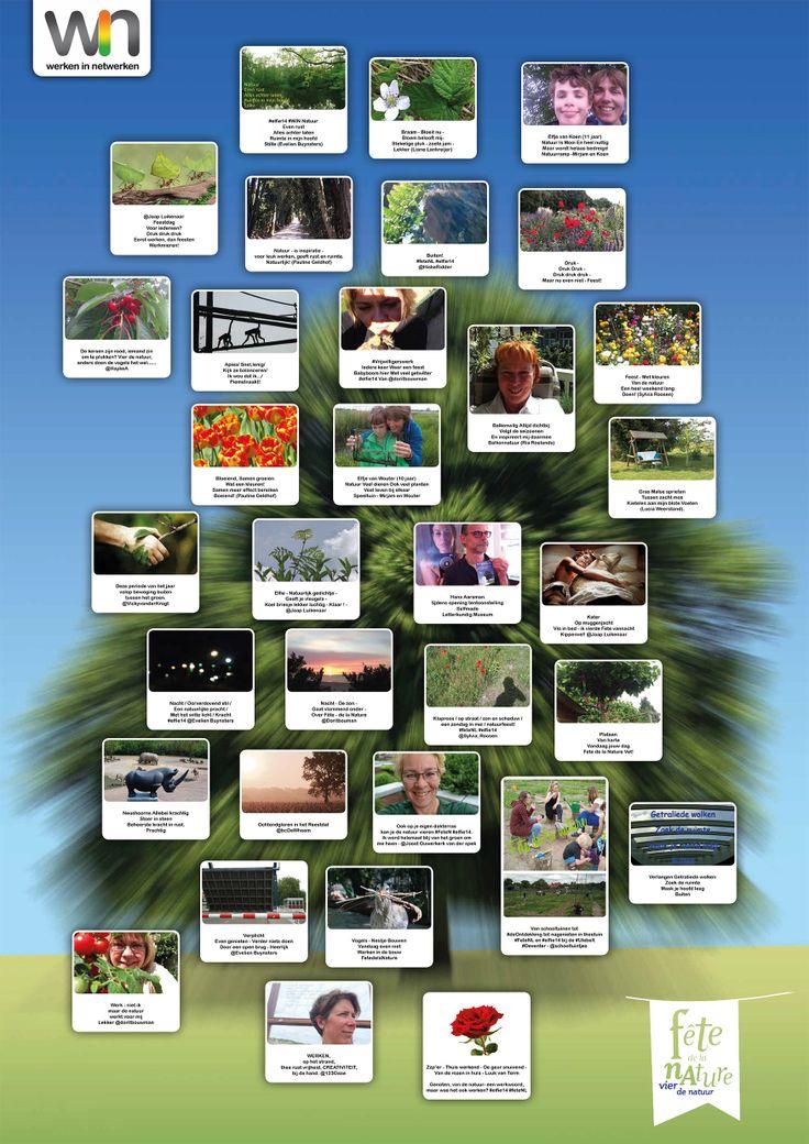 """De poster die is gemaakt n.a.v. de actie """"Maak een selfie of schrijf een elfie"""" t.g.v. Fête de la Nature"""