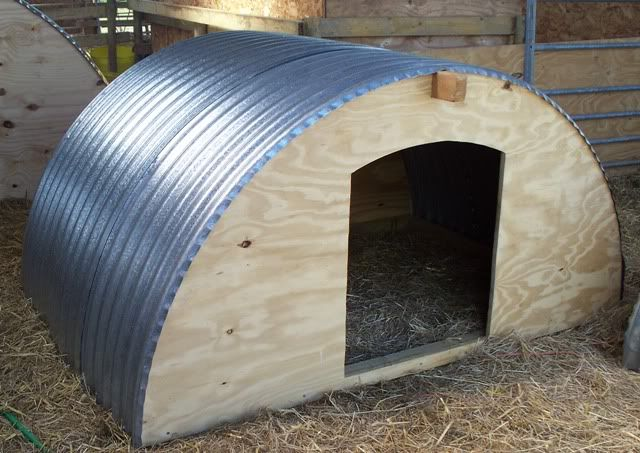 Best Pig Shelter : Best images about mini kune on pinterest