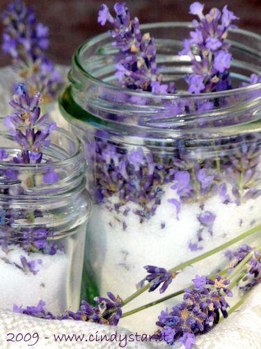 lavender sugar - whb 188 by cindystarblog, via Flickr
