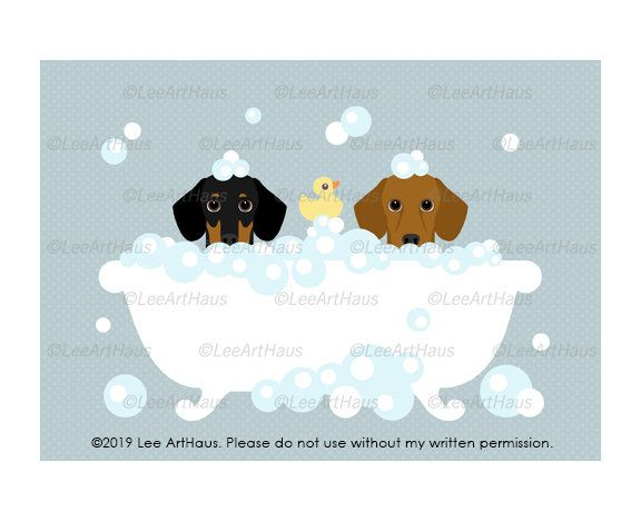 90g 5x7 Two Dachshund Dogs Peeking In Bubble Bath Bathtub Wall Art Dog Taking Bath Cute Bath Art Bathroom Decor Art Bath Art Dog Peeking Dog Bathroom