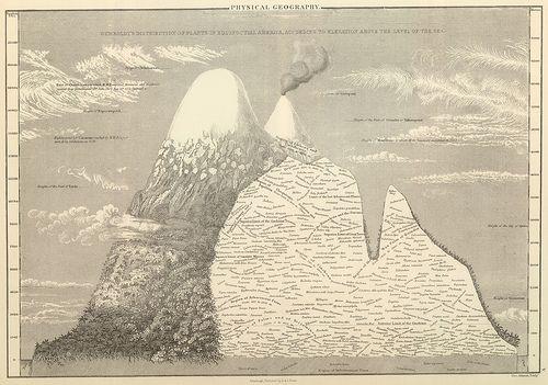 Humboldt's Distribution of Plants in Equinoctial America, 1854 (peacay, via Flickr)