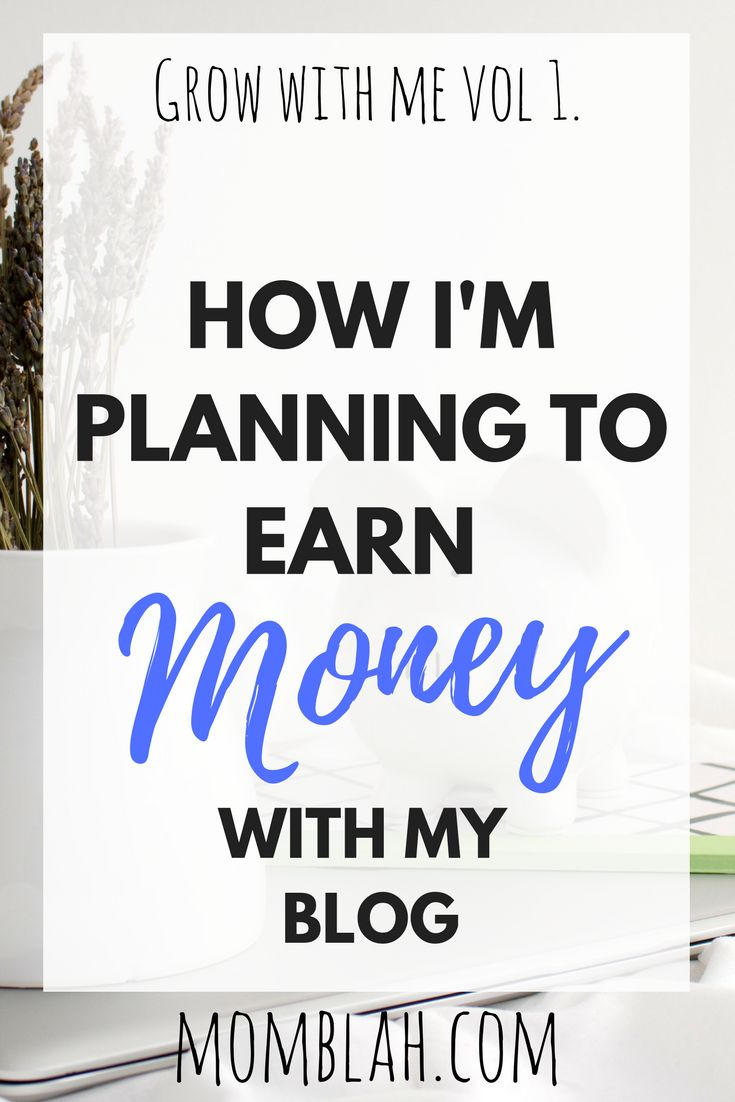 How I'm Planning to Earn Money with A Blog [Grow With Me, Volume 1] – – Writing Life