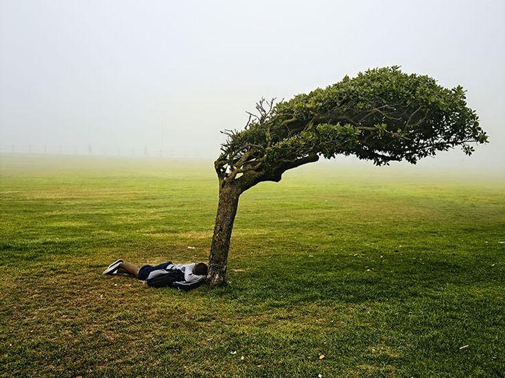 Pieter Hugo, photographe sud-africain, nous propose une très belle réflexion sur l'identité à travers de poignantes photos. A voir à la Fondation Henri Cartier-Bresson