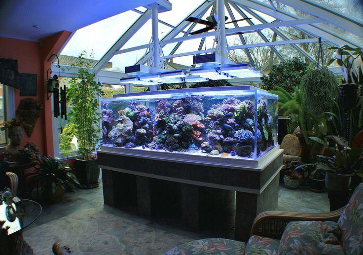 Awesome Aquarium Decoration Ideas ~ http://www.lookmyhomes.com/creative-aquarium-decoration-ideas/
