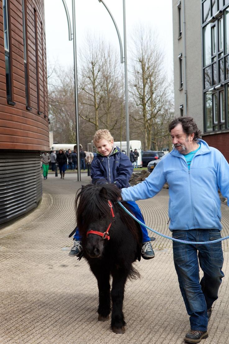 Paardenmarkt Weert