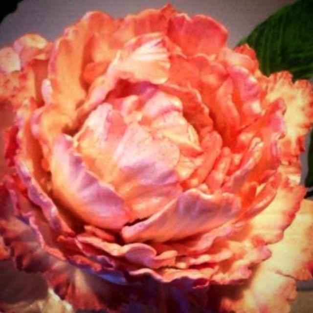 """""""Pion laget av blomsterpasta og dustet #sugerflower #handcrafted #handmade #pion #peoney #slikkepott_no #reneeskarsfjord"""""""