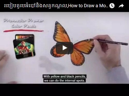Beautifulplace4travel: How to Draw a Monarch Butterfly & Mouse in 3D Art Time Lapse