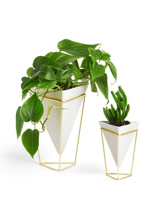 Mod Desk Plant: if this is the year she's going to start selling her stationary on Etsy or make the full-time leap into freelance life, help make her home office as pretty as she is. These modern vessels are anything but stuffy. Click through for more Valentine's Day gifts for her.