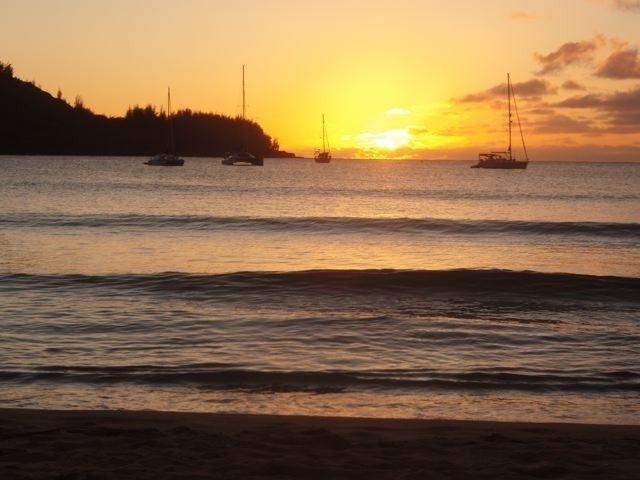 23 best Kauai trip images on Pinterest