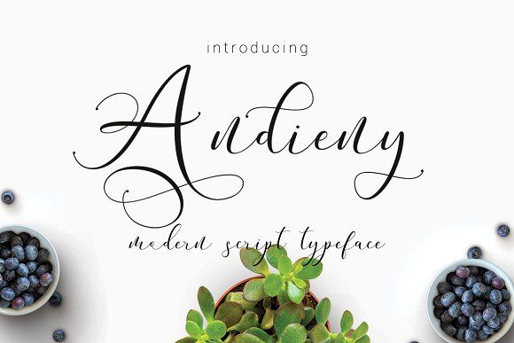 Andieny Script by thirtypath on @creativemarket