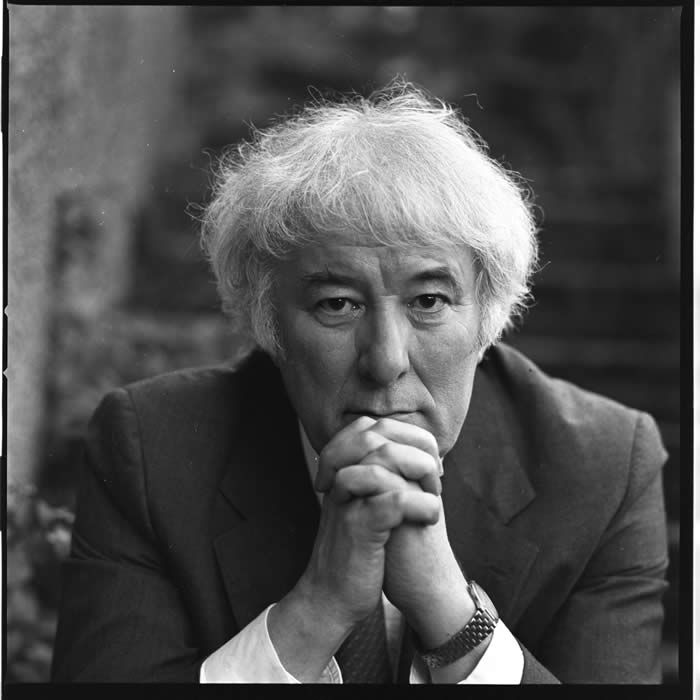 seamus heaney poetry Digging by seamus heaney digging learning guide by phd students from stanford, harvard, berkeley.
