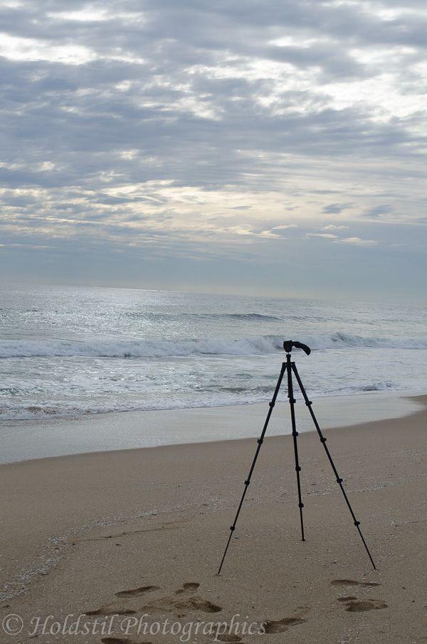 L1M1AP3 Nikon D5100 Automode no flash 1/320 sec f/9 ISO 100 Hand held