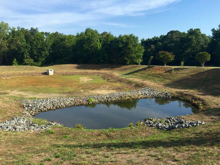 34 best call 704 816 0526 lake management charlotte nc for Fish pond management