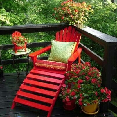 A splash of red to liven up your outdoor space