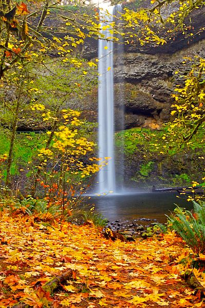 "Upper South Falls at Silver Falls National Park, near Silverton, Oregon ~ Mike writes, ""South Falls is one of the three waterfalls in the park that you can actually walk behind which is a fun experience for young and old.  Continuing behind the falls will lead you across an attractive foot bridge across Silver Creek which will connect you with the Trail Of Ten Falls"