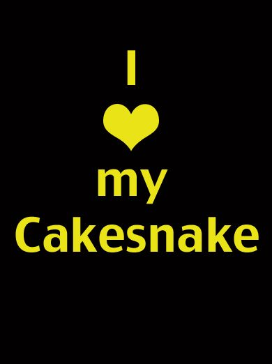 The Cakesnake rack is made of aluminium, making it light but strong. It is great for organising bakeware, such as baking trays, cookie sheets, roasting tins, muffin pans and cooling racks. It can also be used to store chopping boards, platters, trays, cook books or pie dishes. The Cakesnake can be used in most standard sized kitchen cabinets or deep drawers and can be easily moved into another cupboard or drawer if you re-organise your kitchen or move house.