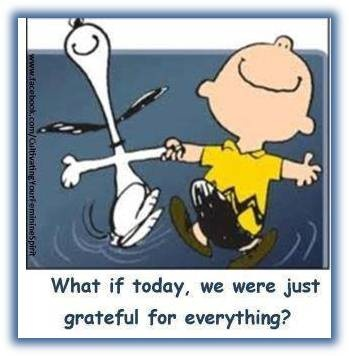 Charlie Brown & Snoopy get it.Happy Dance, Quotes, Be Grateful, Charli Brown, Charliebrown, Gratitude, Charlie Brown, Grateful Heart, Peanut Gang
