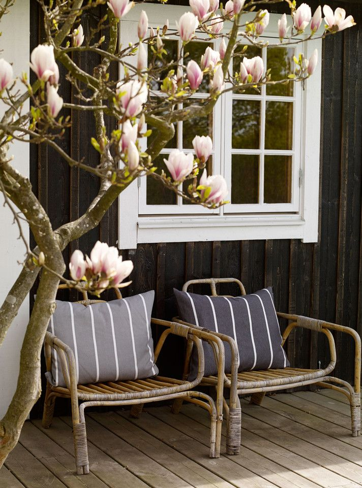 Under the magnolia tree Helén Pe: Linum : Interior/Lifestyle: Choice Stockholm