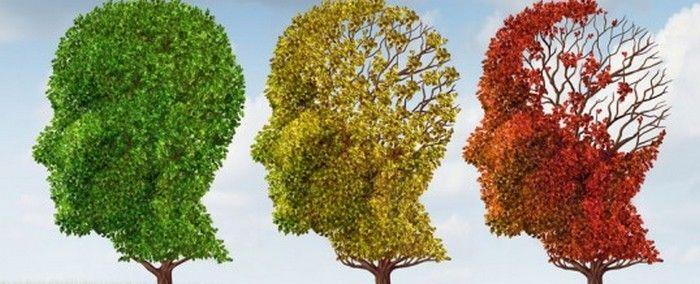 Maladie d'Alzheimer : Dr Mary Newport