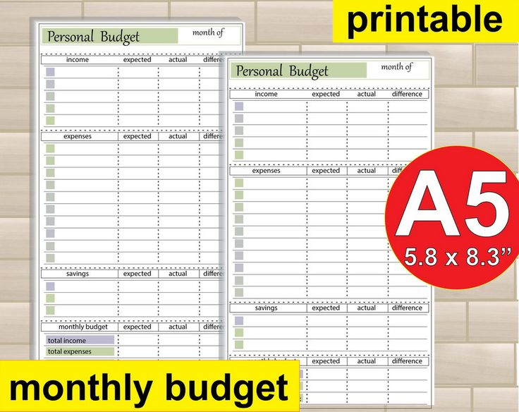 budget printable  a5 budget  happy planner size inserts