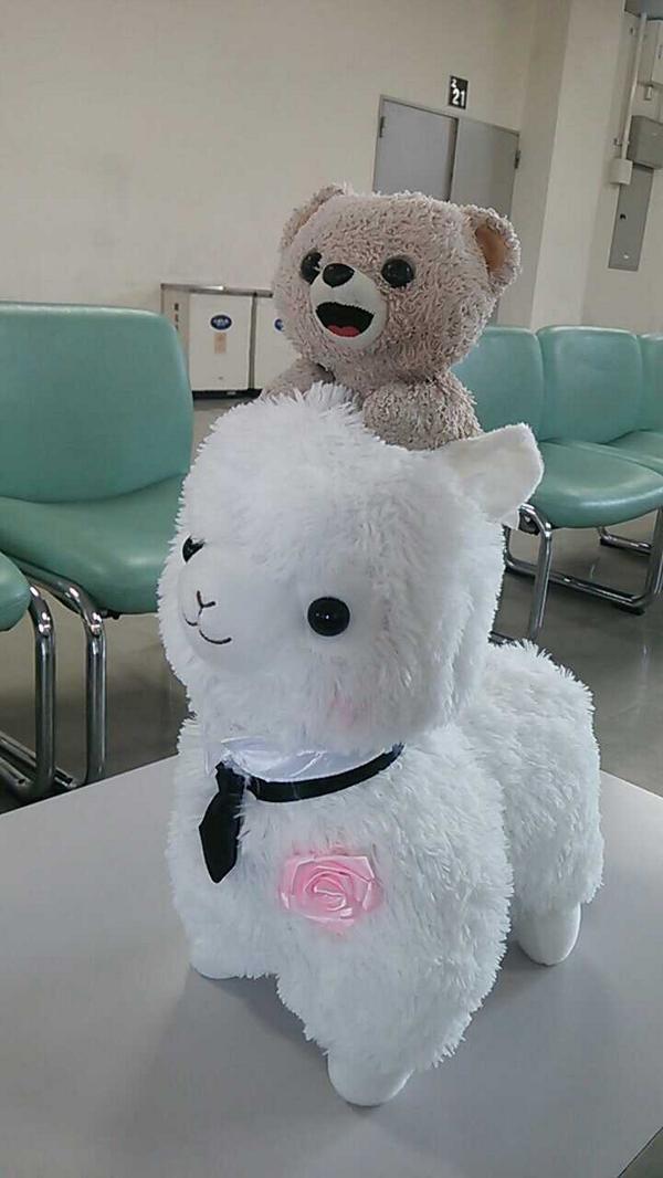 ふんわり☆ レッツゴー♪ https://twitter.com/fafa_bear/status/496605494195126273