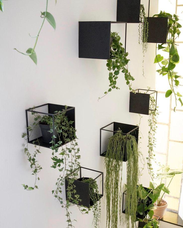 """341 Synes godt om, 9 kommentarer – Design Nest CPH (@designnestcph) på Instagram: """"Urban staircase... #planter #grøn #grønneplanter #trappeoppgang #greenliving #opgang #bolig…"""""""
