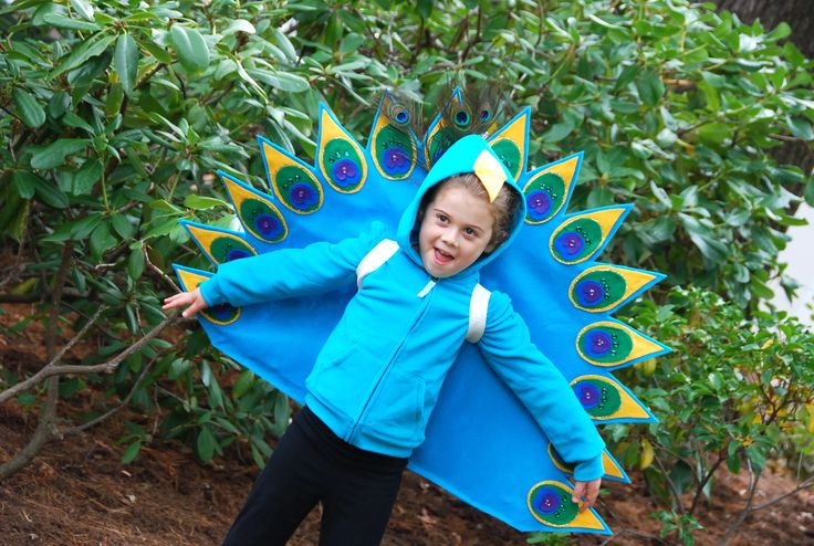 Child's Peacock Costume    Google Image Result for http://feltsocute.files.wordpress.com/2010/10/peacock1.jpg