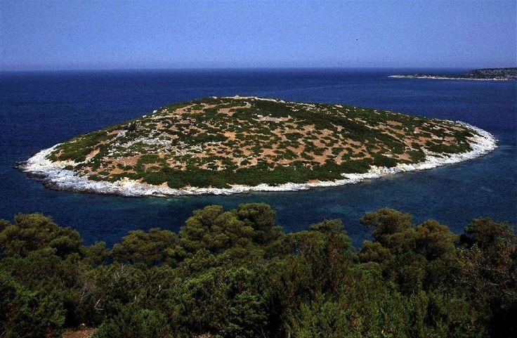 Little island off shore